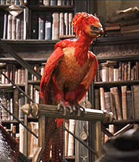 Fawkes, the Phoenix